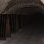Moet et Chandon Cave (Cellar)